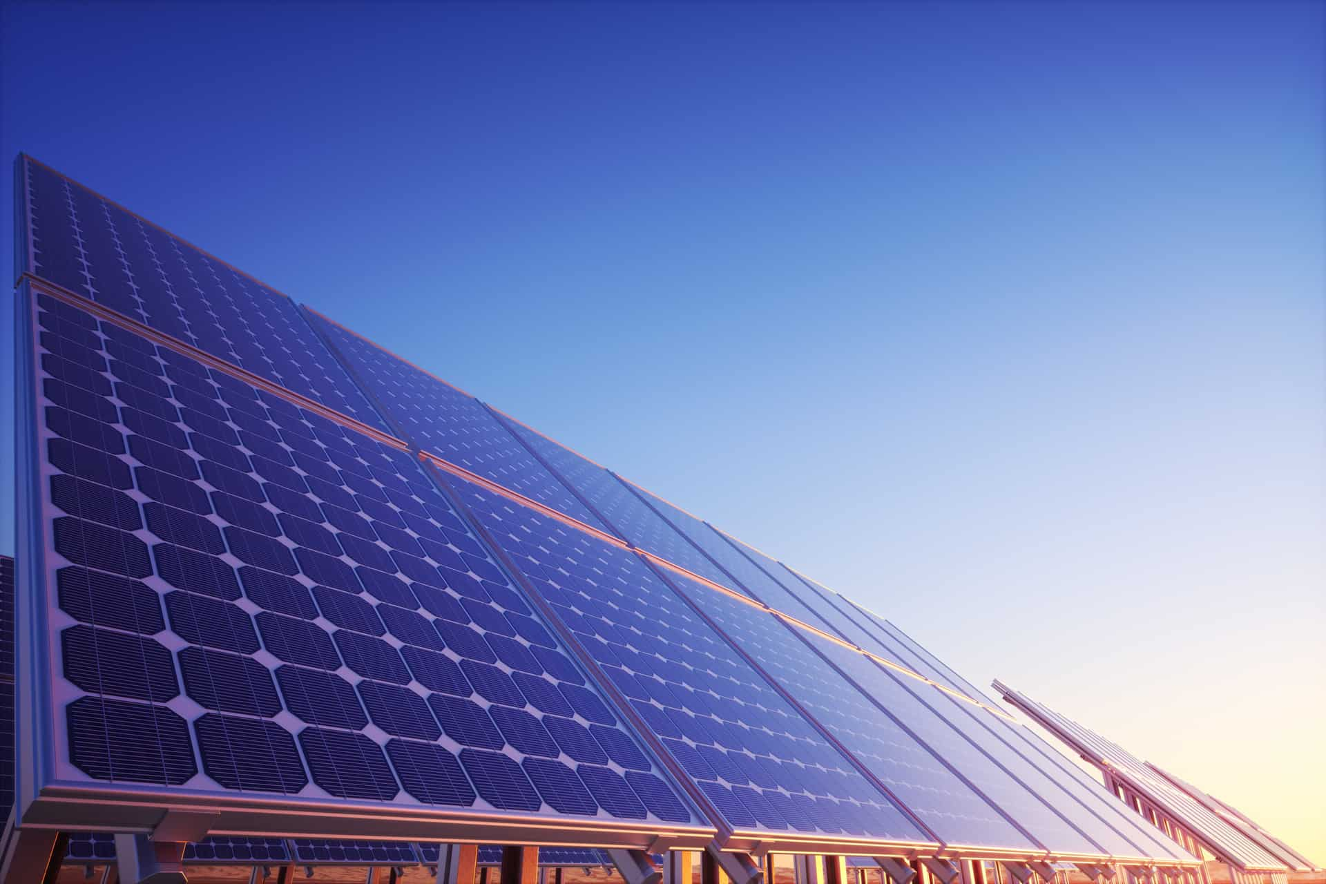 Image of a ground mount solar array